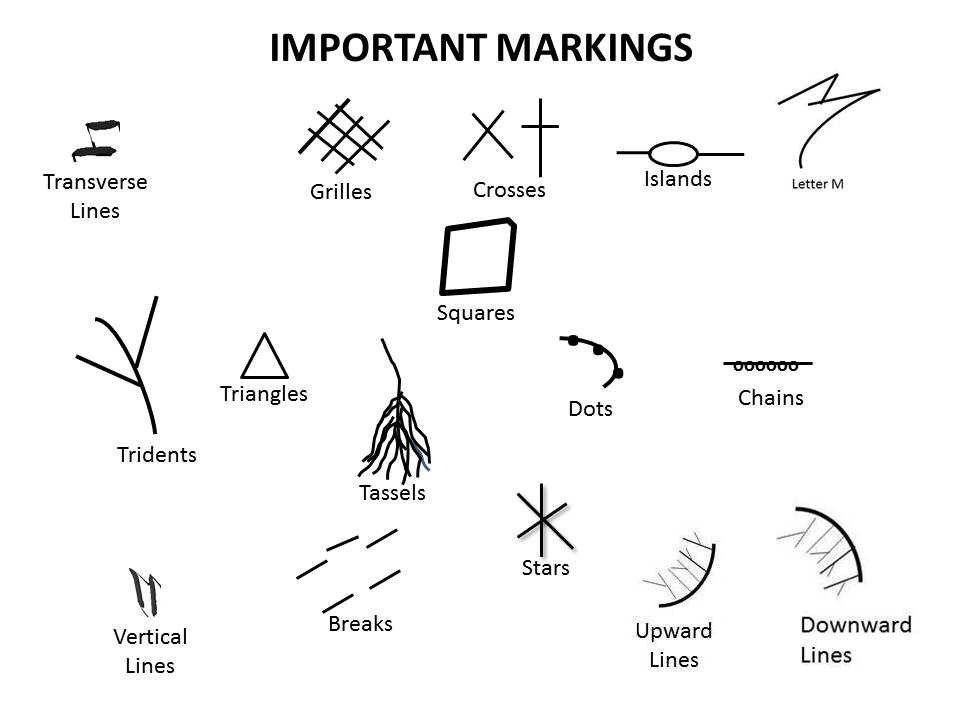 Palmistry Markings and Meanings – Psychic Library ~ Beyond Books